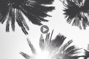 playlist-36