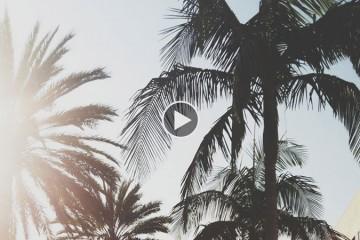 Playlist-12