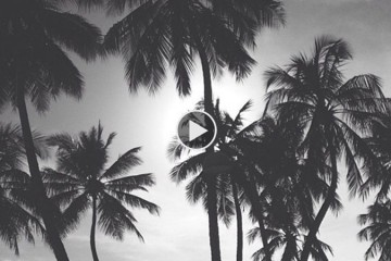 Playlist-18