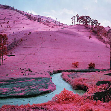 Richard-Mosse-Men-Of-Good-Fortune-North-Kivu-Eastern-Congo-2011
