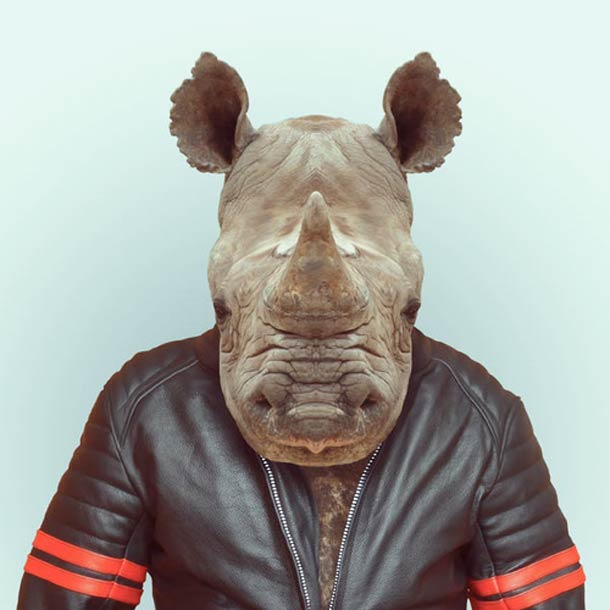 Zoo-Portraits-Yago-Partal-10