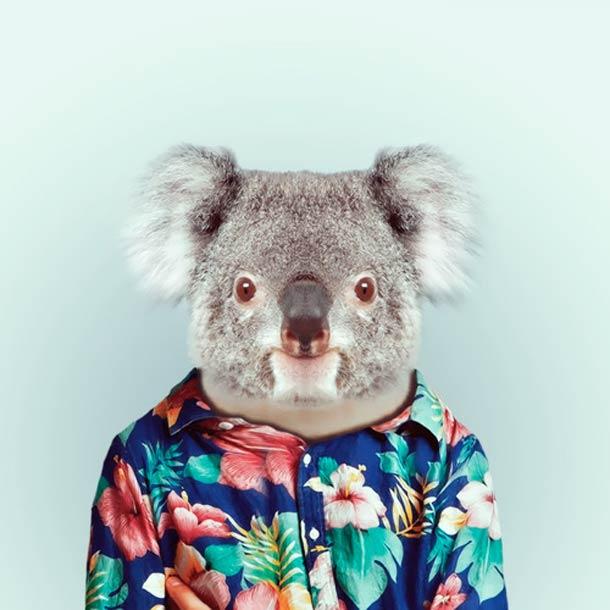 Zoo-Portraits-Yago-Partal-14