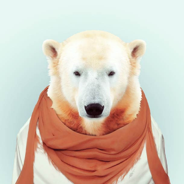 Zoo-Portraits-Yago-Partal-18