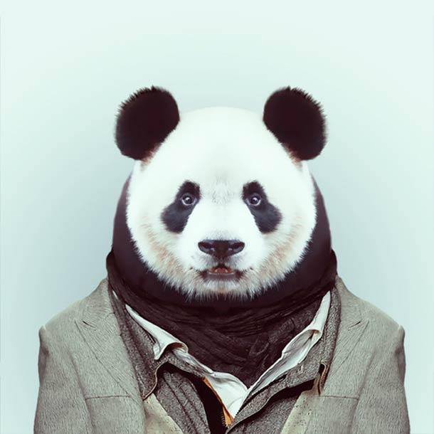 Zoo-Portraits-Yago-Partal-3