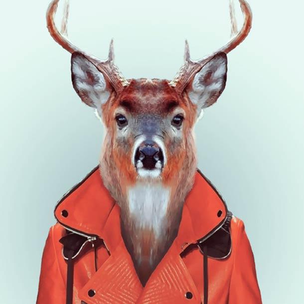 Zoo-Portraits-Yago-Partal-6