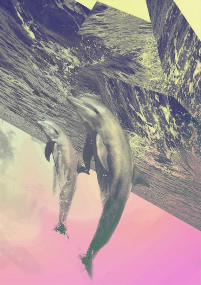 drew-turner-art-dolphins3