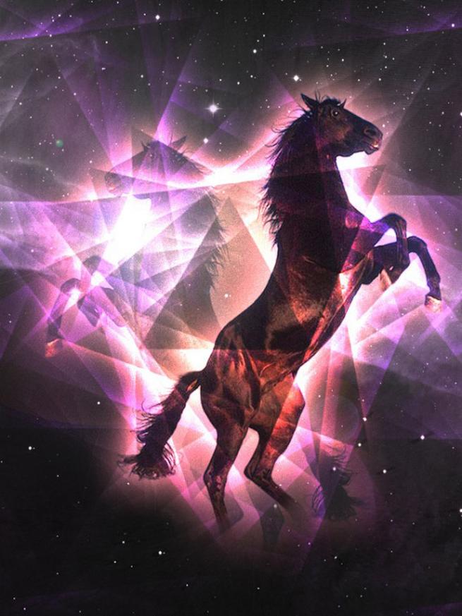 drew-turner-art-horse800600-565x753