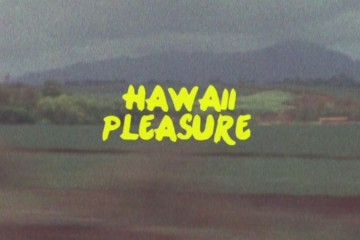 hawaii-pleasure-cover