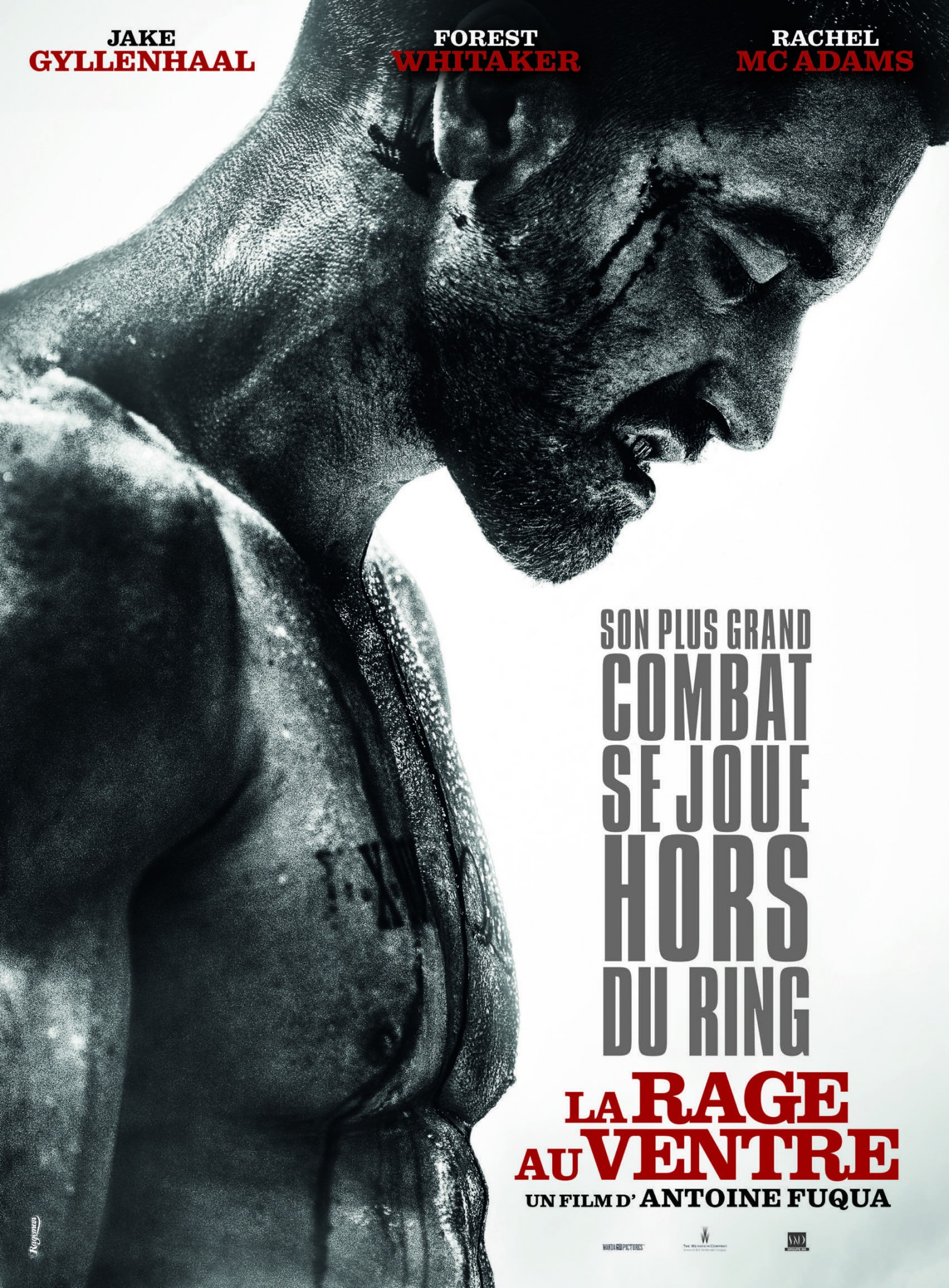 top-20-affiches-films-2015-folkr-La-rage-au-ventre